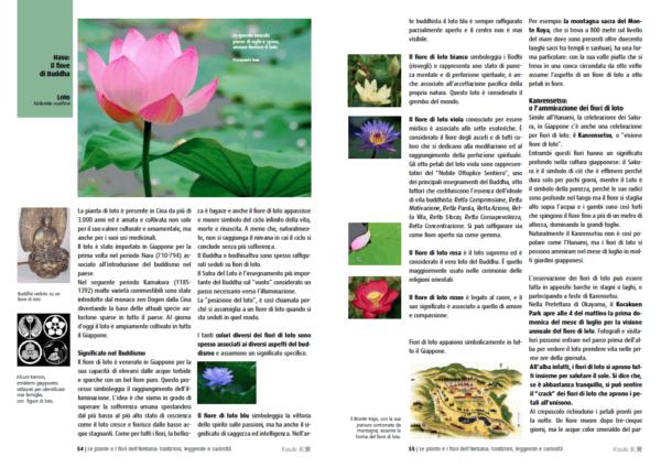 Piante e fiori dell'Ikebana